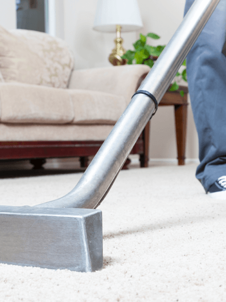 Carpet Cleaning in Bloomington